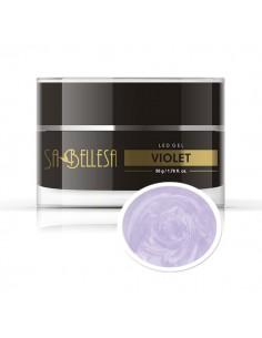 Gel costruttore Led Violet 50g